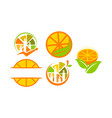 orange icon emblem blank template set vector image