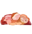 Different kinds of meat set Pork meat veal and vector image