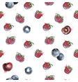 berries seamless pattern vector image