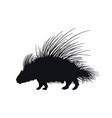 black silhouette african porcupine vector image vector image