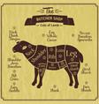 butcher shop of lamb farm vintage vector image