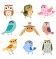 collection of cute owlets colorful adorable owl vector image vector image