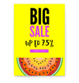 big sale bright poster with half past of vector image vector image