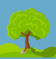 cartoon tree green vector image