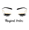 lashes vector image vector image