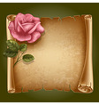 Old paper with rose vector image
