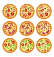 Set of pizza vector image vector image