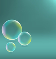 soap bubbles on cyan vector image