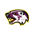american badger mascot vector image vector image