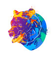 bear icon abstract vector image vector image