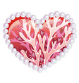 beautiful heart with ornament sea inhabitants vector image