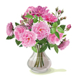 bouquet of pink roses vector image