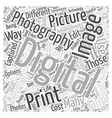 digital fix jp photo photography quality sample vector image vector image