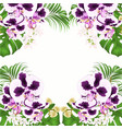 frame tropical flowers spoted orchid vector image