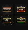 golden vip frame premium banner with gold vector image