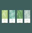 leaves and nature banner set beauty and health vector image vector image