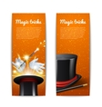 Magic Banners Set vector image vector image