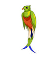 red-necked tanager icon vector image