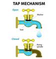 tap mechanism vector image vector image