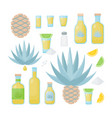 tequila and blue agave flat icon set vector image