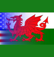 wales dragon stars and stripes vector image vector image