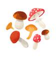 watercolor mushroom composition vector image vector image