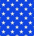 American Stars vector image