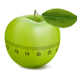 apple with meter vector image vector image