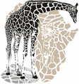 background with a giraffe motif vector image vector image