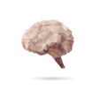 Brain abstract isolated on a white backgrounds vector image vector image