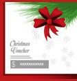 christmas voucher design vector image vector image