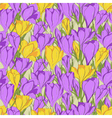 crocus seamless patterm 1 purple yellow vector image vector image