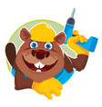 emblem beaver carpenter vector image