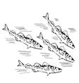 hand drawn school of northen fish vector image vector image