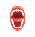 human teeth open mouth on a vector image