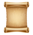 Scroll paper vector image vector image