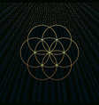 a background with golden flower of life vector image