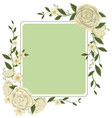 border template with white roses vector image vector image