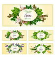 fresh herbs spices and condiments banner set vector image vector image