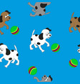 little dogs play with the ball vector image vector image