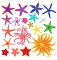 sea stars set multicolored starfish on a white vector image vector image