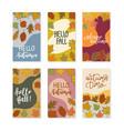 set social media stories design banner autumn vector image vector image