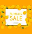 summer sale banner poster flyer lemon on a vector image