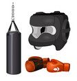 boxing equipment punchbag on chain protective vector image