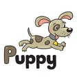 Little dog or puppy for ABC Alphabet P vector image vector image