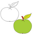 set apple drawn in black lines and painted vector image vector image