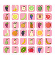 set fruit icons vector image vector image