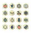 Thin Line Icons For Fruits vector image vector image