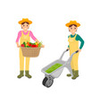 woman with farming basket vector image vector image