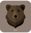 Animal Portrait With Flat Design Brown Bear vector image vector image